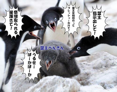 ペンギンの要塞戦